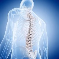 Osteoporosis Prevention Methods